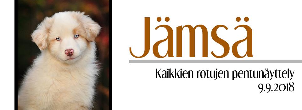 Jämsän pentunäyttely 9.9.2018