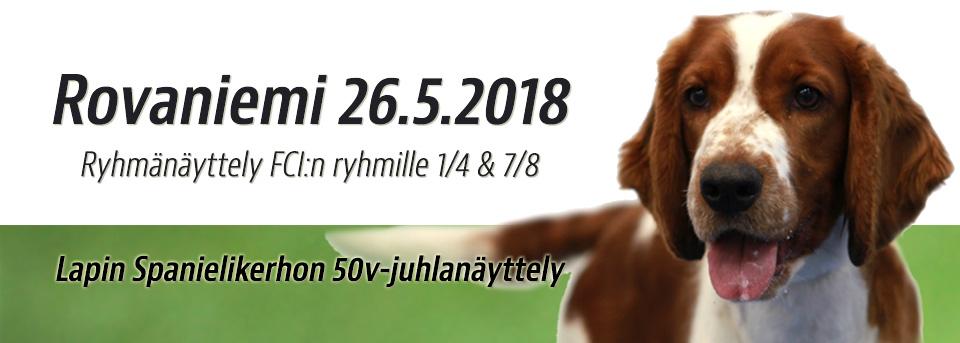 Rovaniemi ryhmänäyttely 26.5.2018