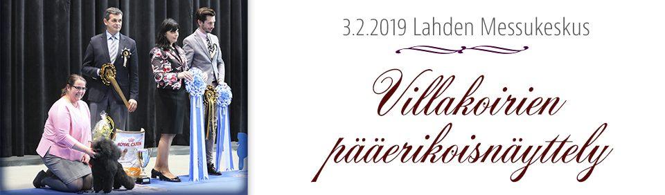 Villakoirien erikoisnäyttely 3.2.2019