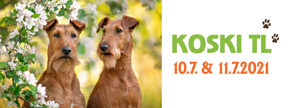 Ryhmänäyttelyt Koski TL 10.7. & 11.7.2021