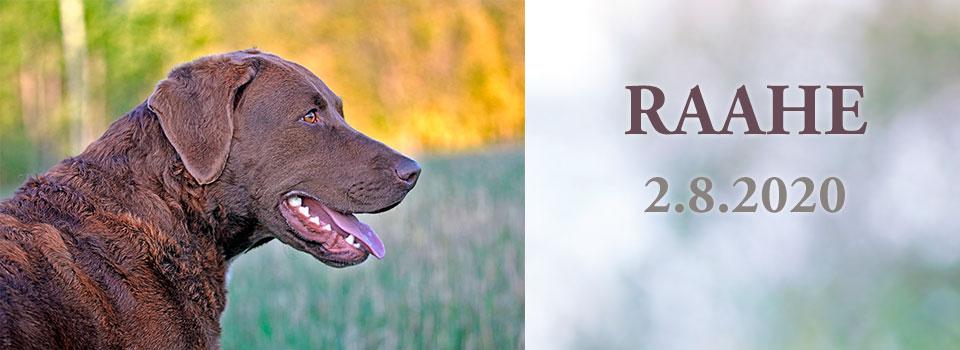 Raahe RN 2.8.2020