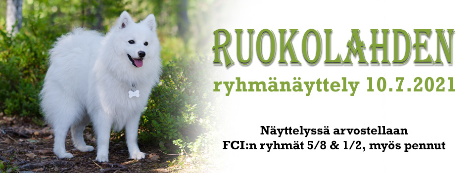 Ruokolahden ryhmänäyttely 10.7.2021