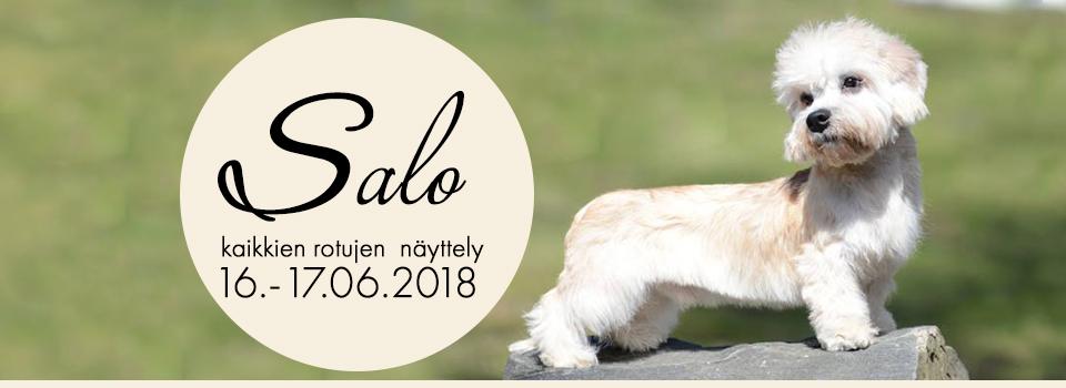 Salo KR 16-17.6.2018
