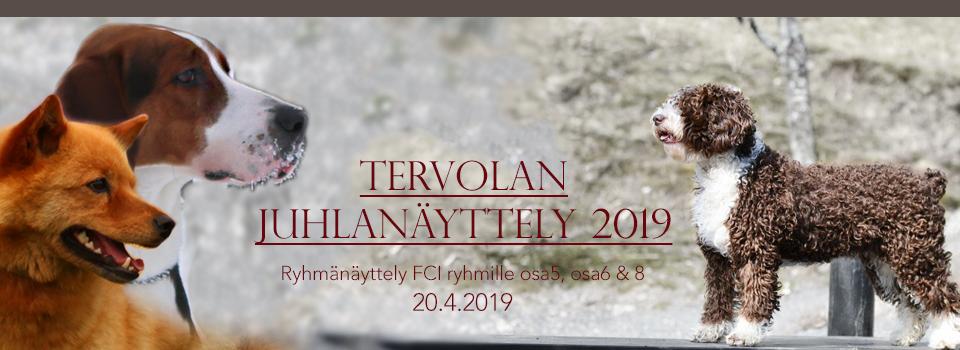 Tervolan ryhmänäyttely 20.4.2019